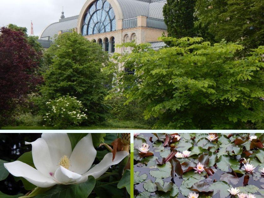 Der Botanische Garten Flora Köln.