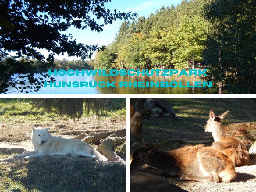 Rheinböllen Tierpark Hochwildschutzpark Hunsrück