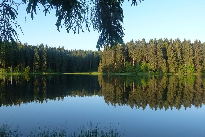 Harz statt Fernweh